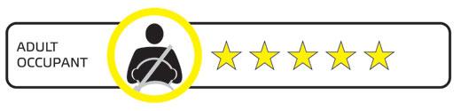 Euro NCAP adult logo