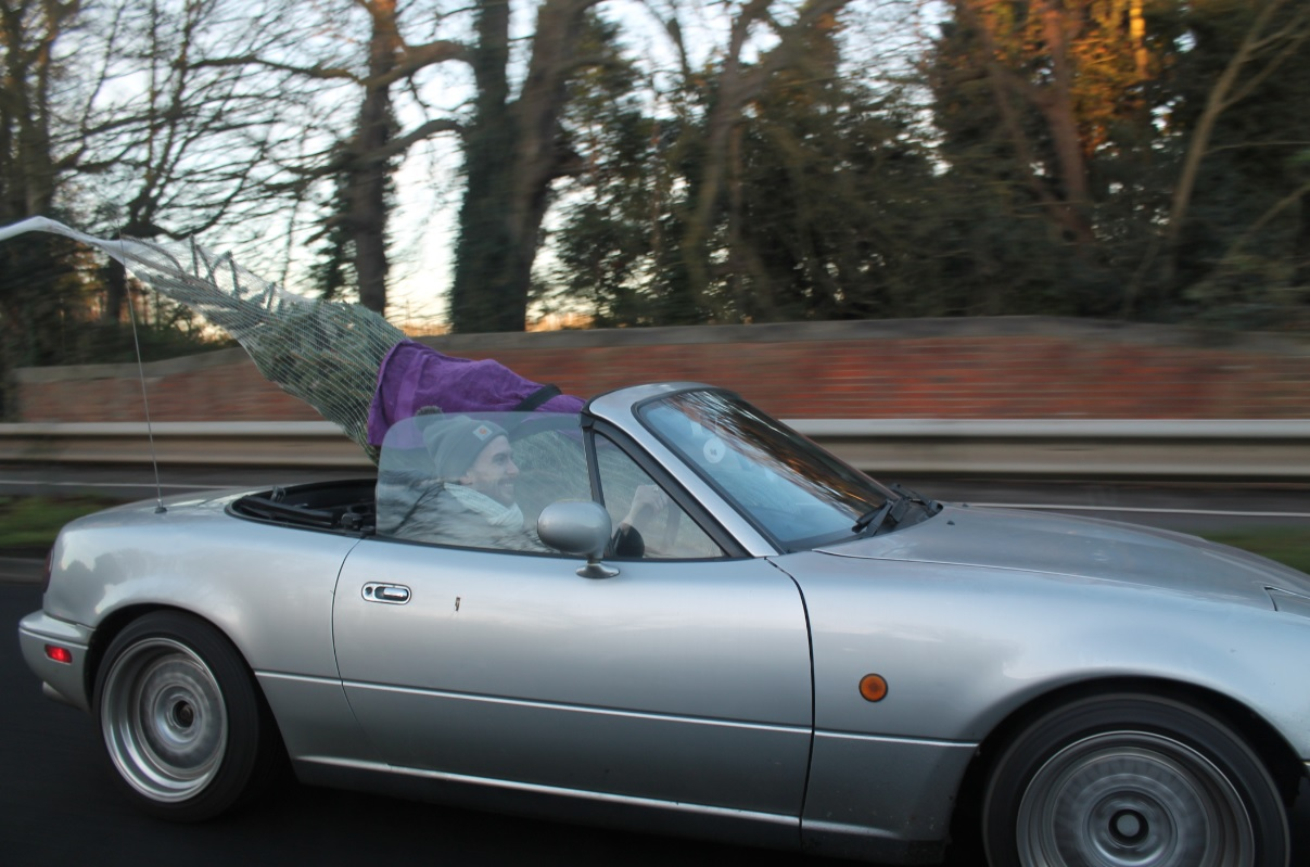 Best car to transport a christmas tree in!