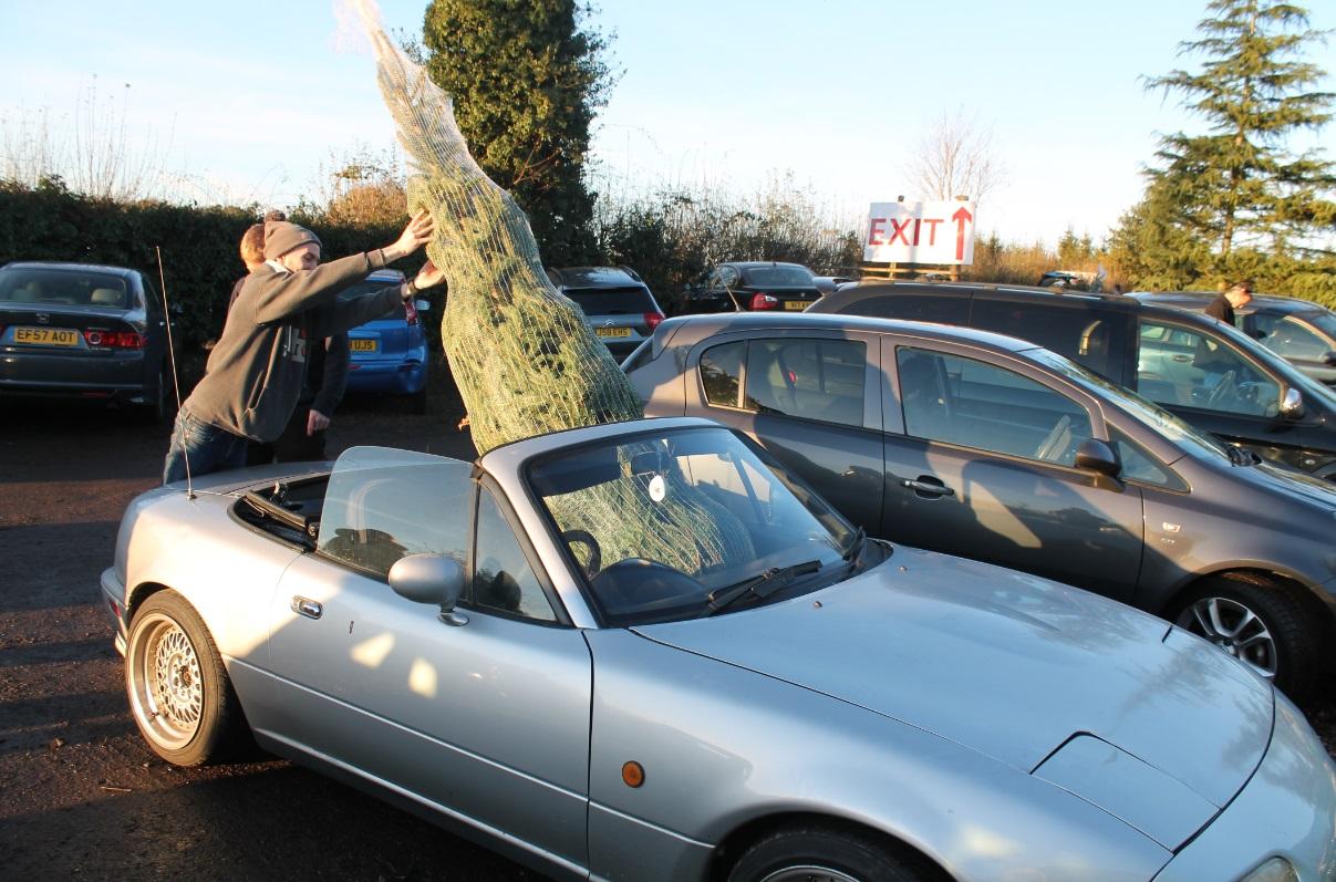 MX-5 christmas tree2