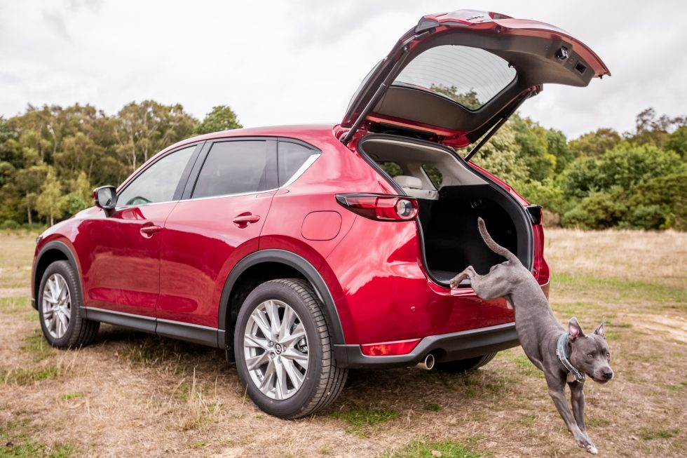 Dog jumps out of Mazda CX-5 boot